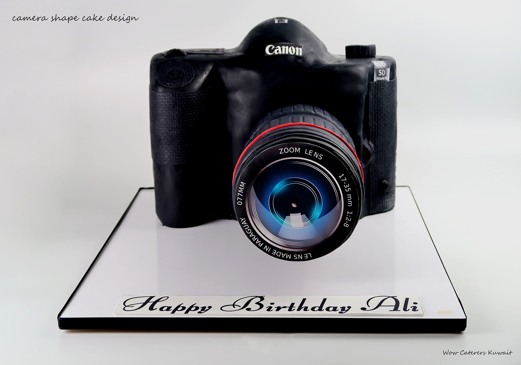 Phenomenal Camera Cake Wow Caterers Funny Birthday Cards Online Barepcheapnameinfo